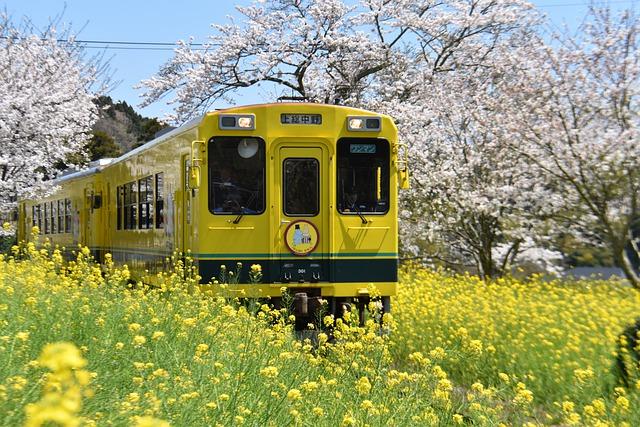 vlak ve žluti